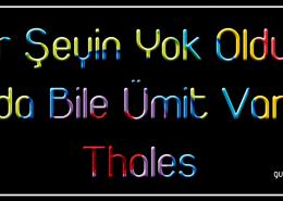 resimli-guzel-sozler-thales